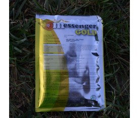 MESSENGER GOLD 60GR