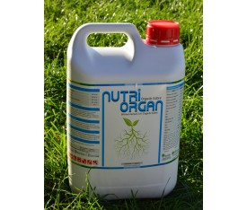 NUTRİORGAN 5LT